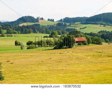 Allgau Panorama, Mountains And Green Meadows