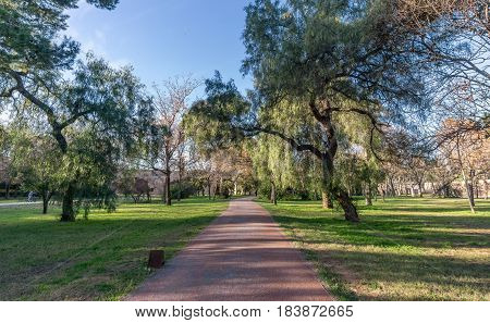 Beautiful landscape of Old dry riverbed of the River Turia gardens, Jardin del Turia, leisure and sport area in Valencia, Spain, trees and running way