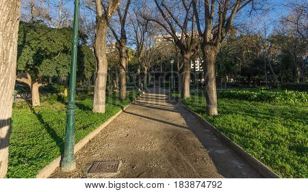 Jardines del Real, Walk in-between trees - Viveros Valencia, near old dry riverbed of the River Turia