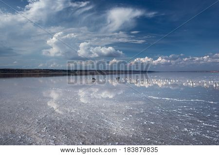 White crystals on the dead saline. Blue sky with white clouds are mirrored in a lake with salt water. Landscape with a lake with salt water.