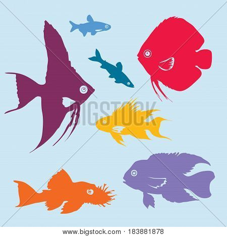 Colorful aquarium fish silhouettes set of different kinds on light background isolated vector illustration