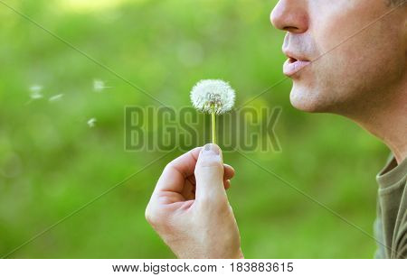 Man blowing dandelion over blurred green grass, summer nature outdoor