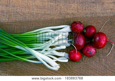 Set vegetable radishes and green onions on a wooden Board brown
