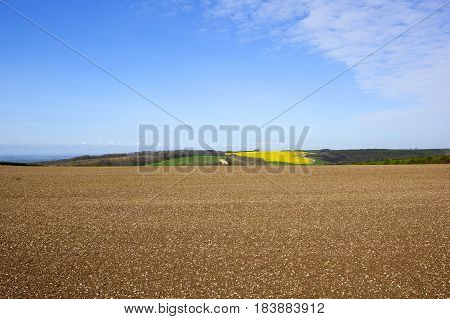 Cultivated Field With Scenery