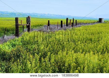Forgotten desolate landscape with abandoned ranchlands including a dilapidated wooden fence taken on a rural prairie in the Carrizo Plain, CA