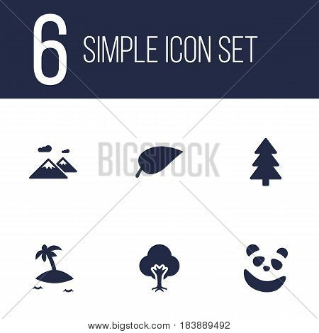 Set Of 6 Environment Icons Set.Collection Of Foliage, Tree, Spruce And Other Elements.