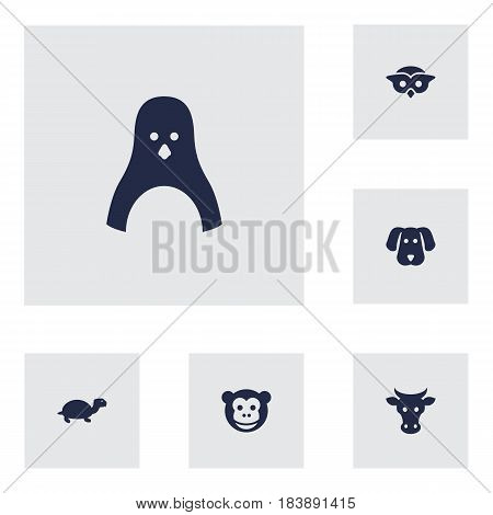 Set Of 6 Beast Icons Set.Collection Of Night Fowl, Hound, Ape And Other Elements.
