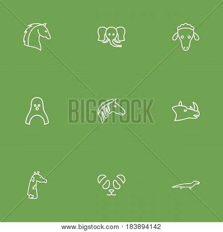 Set Of 9 Beast Outline Icons Set.Collection Of Horse, Rhino, Elephant And Other Elements.