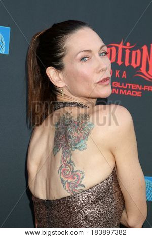 LOS ANGELES - APR 26:  Stacy Haiduk at the NATAS Daytime Emmy Nominees Reception at the Hollywood Museum on April 26, 2017 in Los Angeles, CA