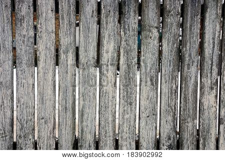 Gray texture of old pine fence boards