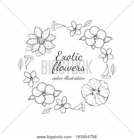 Monochrome floral decorative round wreath concept with beautiful exotic flowers in sketch style isolated vector illustration
