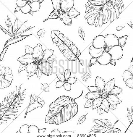 Hand drawn exotic plants seamless pattern with beautiful natural flowers and leaves in monochrome style vector illustration