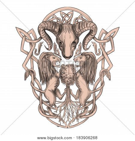 Tattoo style illustration of stylized bighorn sheep head with two lion supporters climbing on tree with Celtic knot called Icovellavna plait work or knotwork woven into unbroken cord design set on isolated white background.