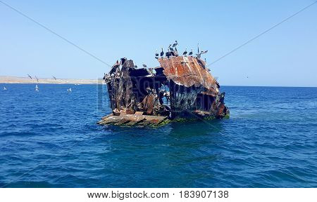 Shipwrecked boat near Cabagua island (Venezuela). There are some seabirds above the rusty abandoned ship.