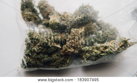 Strains Of Marijuana For Sale. Medical Marijuana And The Legalization Of Marijuana In The World. Shl