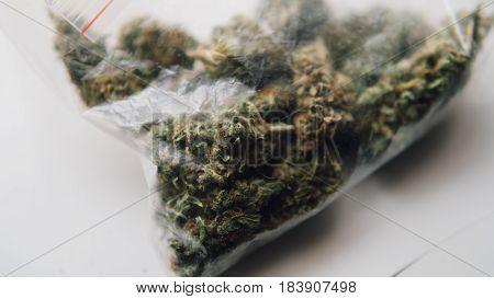 Strains Of Marijuana For Sale. Medical Marijuana And The Legalization Of Marijuana In The World. Shl