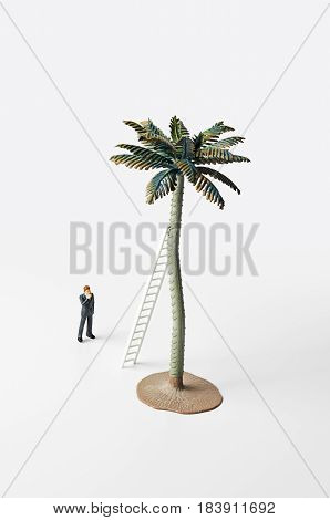 Business figure standing in front of a ladder propped up against a palm tree