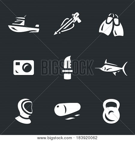 Sea boat, harpoon, fins, camera, knife, fish, wetsuit, float, weight.