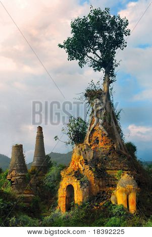 Overgrown pagoda ruins of Indein, Burma, Myanmar (also called Indiana Jones temples of Doom)