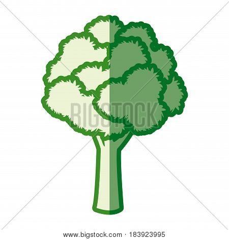 tree leafy wood plant green silhouette vector illustration