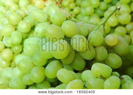 green grape background