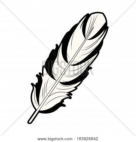 feather free spirit rustic decoration ornate vector illustration