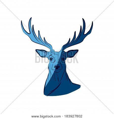 blue free spirit deer animal bohemic design vector illustration