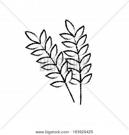 figure healthy wheats organ plant nutricious, vector illustration