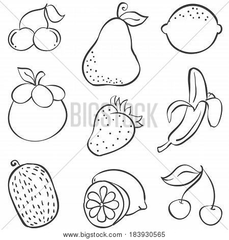 Doodle of fruit various style hand draw collection stock