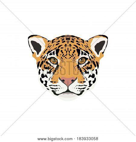 Abstract color jaguar head. Jaguar portrait for design card invitation banner book t-shirt poster sketchbook album etc.