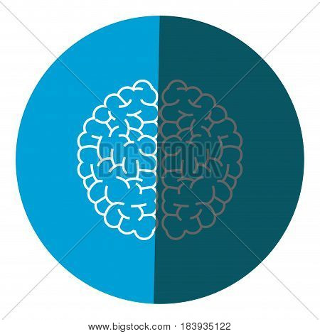 brain human anatomy creativity icon circle vector illustration
