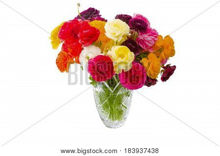 Asian Buttercups Bouquet In Vase