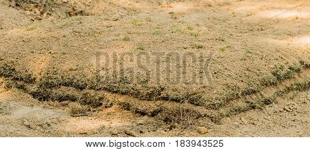 Newly dug grave mound in wooded area on mountain in South Korea