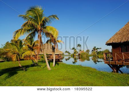 Romantic bamboo cottages in Zapata swamp area on caribbean island Cuba