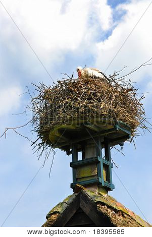 Stork on his nest on top of the roof of a little farm house in Holland poster