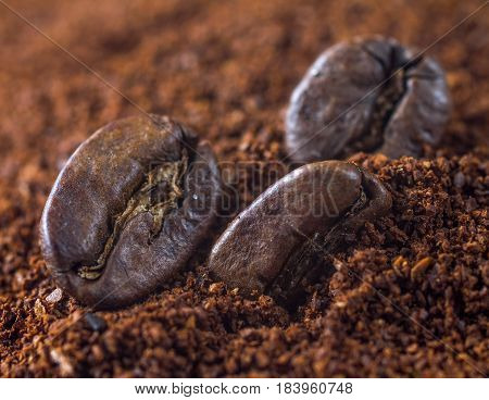 Closeup of coffee beans and ground coffee with focus on one bean