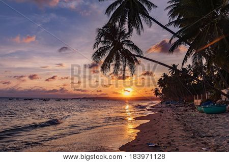 Colorful sunset over the beach in Nui Me Vietnam. Palm trees beach and mess on the beach.