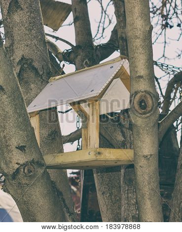 Birdhouse at city park Day Outdoor, spring day