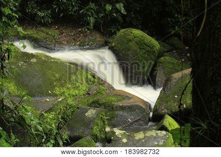 Cha's waterfall, milky, gree, water, nature, tree
