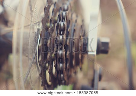 The gears of asterisks of a bicycle close-up on a background of a green forest. Mechanical parts of the bicycle, metal, gears, sport.