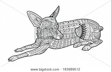 Cute dog of breed Chihuahua coloring page. vector illustration