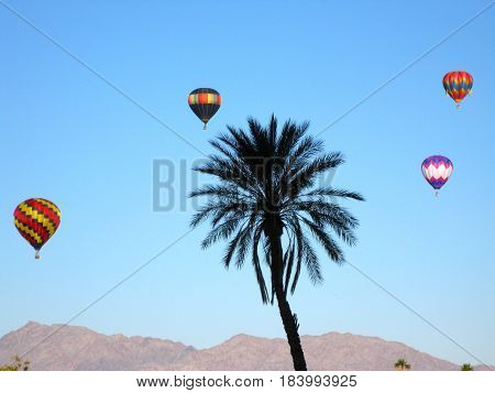 Hot air balloons floating in a blue sky above a palm tree and mountains
