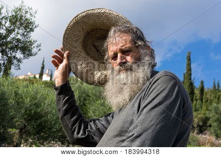 PELOPONNESE, GREECE - NOVEMBER: An old man salutes with his hat while working in an olive field during the harvest on November 11, 2017 in Peloponnese, Greece.