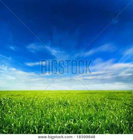 background of cloudy sky and grass