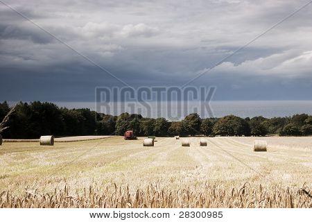 Hay bales and cloud
