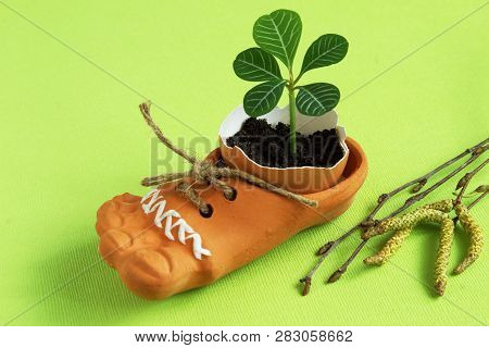 Delicate green sprout in eggshell in brown ceramic shoe with jute cord and birch twigs on light green background. Symbolic concept - the revival of life. poster