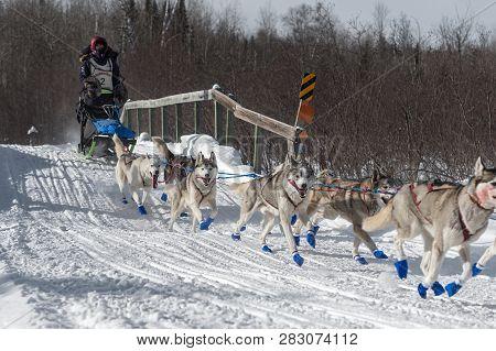 Duluth, Mn - January 27, 2019: Jennifer Frekings Team Crosses Bridge During The John Beargrease Sled