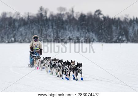 Grand Marais, Mn - January 28, 2019: Erin Altemus Team Comes In To Trail Center Checkpoint During Th