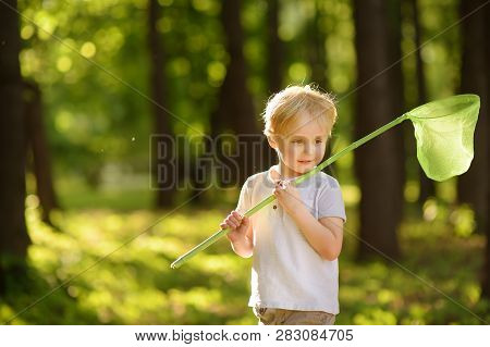 Cute Little Boy Catches Butterflies With Scoop-net On Sunny Meadow.study Of Nature. Yo?ng Explorer O