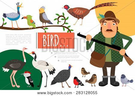 Flat Birds Colorful Natural Composition With Hunter Holding Gun Pigeon Parrot Crane Sparrow Pheasant